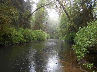 Kalaloch Creek 051619 01