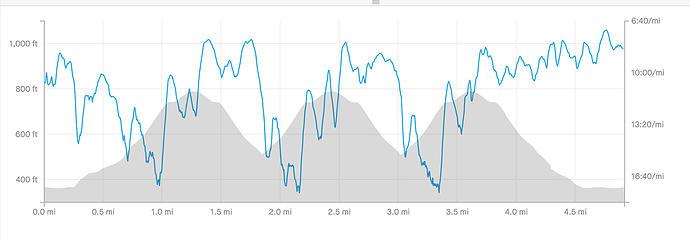 Somerset Hill run