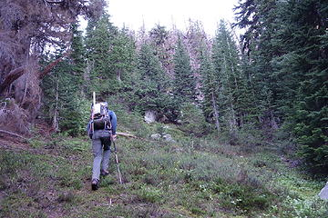 Burned out terrain above Copper Basin