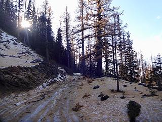 Walking the last 1/4 to the trailhead mile up Rd 9712 (Beehive) due to some ice.