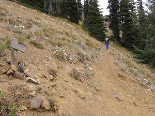 Miller Peak summit trail junction.