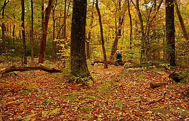 14- Enjoying the fall colors (selfie)
