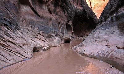 Wading through the narrows