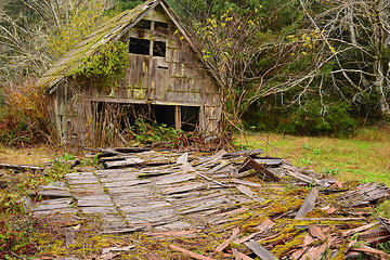 George Anderson barn - Queets Valley 102514 - photo courtesy Jim Hoare