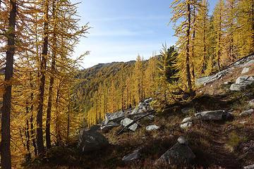 Peepsight Lake trail