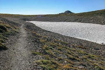 tundra environment