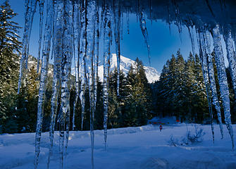 icicles and Rainier