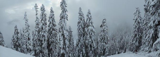 Snowy pano