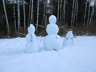 Winter natives