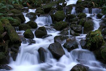 Wallace Falls State Park, Washington Jan 20th 2008.