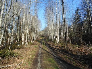 West Rocky Prairie Wildlife Area 022020 04
