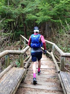 trail to Shi Shi
