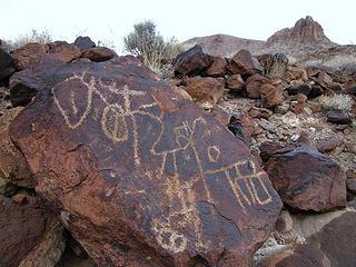 Trail 300 petroglyph