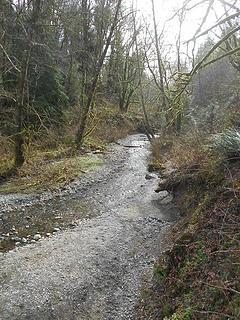 Swan Creek Park 022120 04
