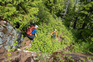 Nearing the creek it got really steep with veggie belays coming in handy