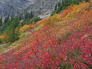 The trail to Easy Pass was very colorful