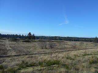 West Rocky Prairie Wildlife Area 012421 25