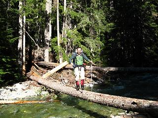 Bold, vain way to cross the log