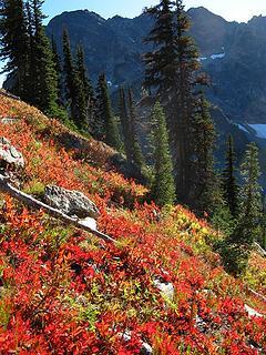 Twisp descent meadows