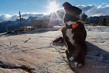 12 and still backpacking!