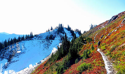 heading back on the High Divide with the Hoh Lake trail iin the distance