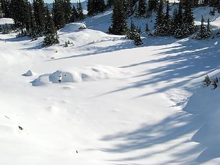 Tarn 2 Hiding in the Snow