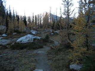 shady return trail