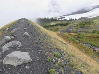 Looking the other direction  at the top of  the Hogback, looking NE toward lower Coleman Glacier and Survey Rock.