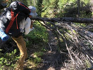 Boundary Trail at Frosty Creek, Slate Pass, Buckskin Ridge, Frosty Pass, PCT Loop, 8/12-8/19/20