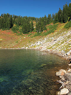 Lime Lake Shoreline