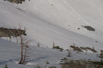 Ski tracks coming down from Silver Pass