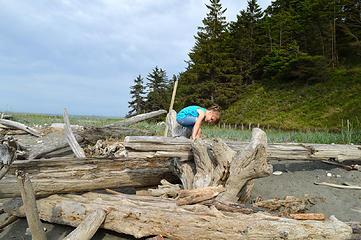 Driftwood exlporation 1