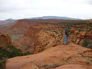Meeks Mesa off trail