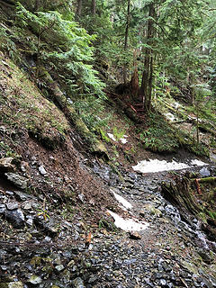 The Sultan River Canyon Trail 3/24/19