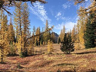 Entering perhaps the most spectacular Larch basin below the west ridge above Bernice Lake