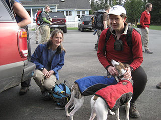 "The whippets get attention from ""Uncle Steve."""