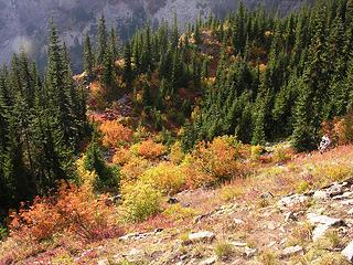 Commonwealth Basin Trail, Central Cascades, WA, USA