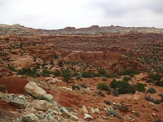 Into Spring Canyon