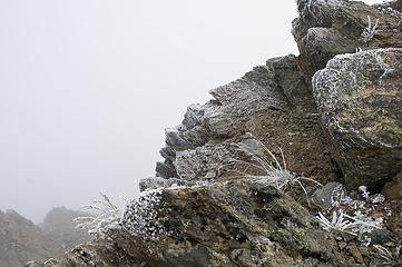 Rime ice on the rocks