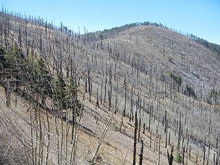 Chiricahua main peak